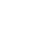 SLM Revisjon